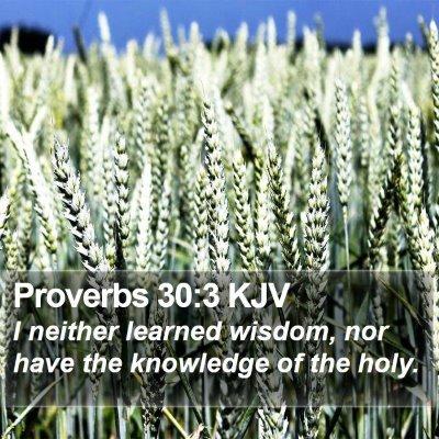 Proverbs 30:3 KJV Bible Verse Image