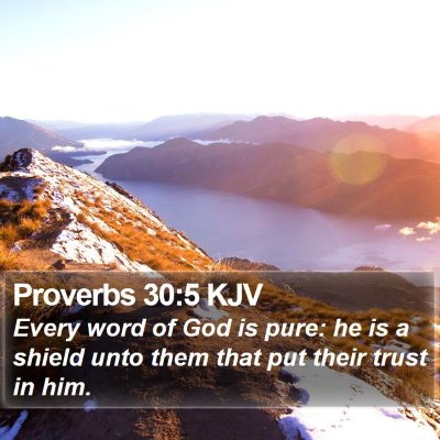 Proverbs 30:5 KJV Bible Verse Image