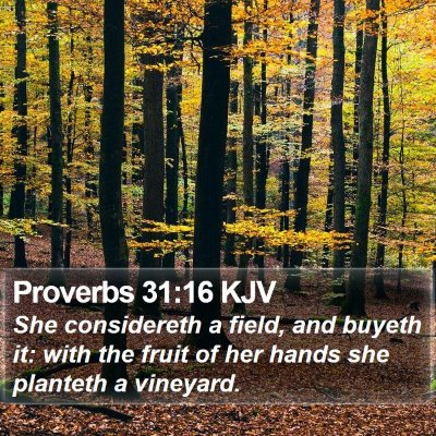 Proverbs 31:16 KJV Bible Verse Image