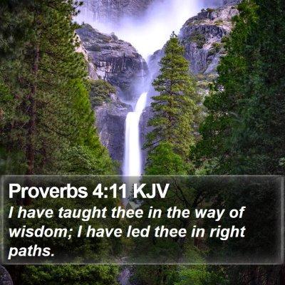 Proverbs 4:11 KJV Bible Verse Image