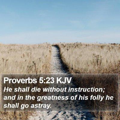 Proverbs 5:23 KJV Bible Verse Image
