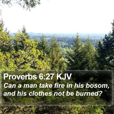 Proverbs 6:27 KJV Bible Verse Image