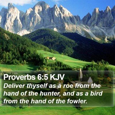 Proverbs 6:5 KJV Bible Verse Image