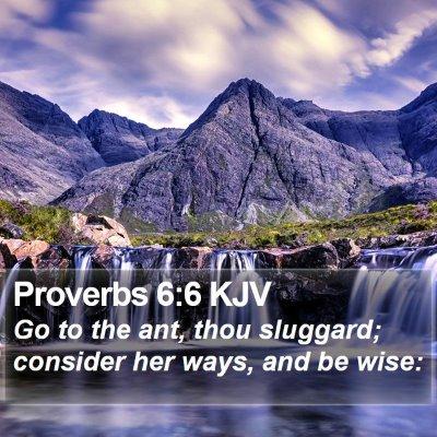 Proverbs 6:6 KJV Bible Verse Image