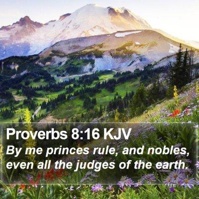 Proverbs 8:16 KJV Bible Verse Image