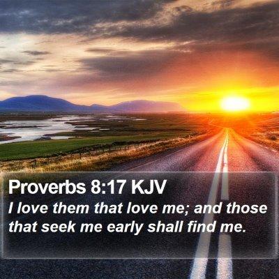 Proverbs 8:17 KJV Bible Verse Image