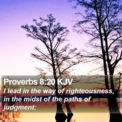 Proverbs 8:20 KJV Bible Verse Image