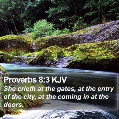 Proverbs 8:3 KJV Bible Verse Image