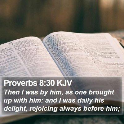Proverbs 8:30 KJV Bible Verse Image