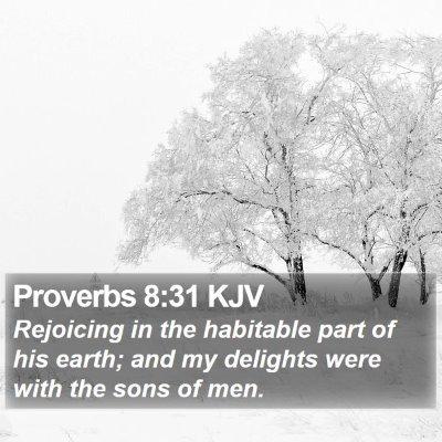 Proverbs 8:31 KJV Bible Verse Image