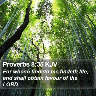 Proverbs 8:35 KJV Bible Verse Image