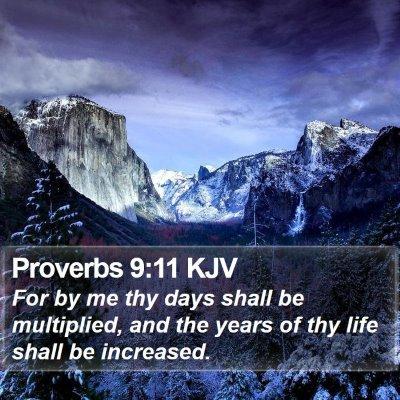 Proverbs 9:11 KJV Bible Verse Image