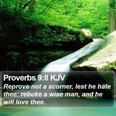 Proverbs 9:8 KJV Bible Verse Image