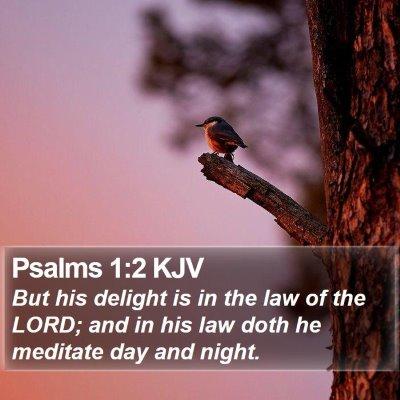 Psalms 1:2 KJV Bible Verse Image