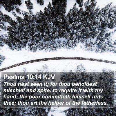 Psalms 10:14 KJV Bible Verse Image
