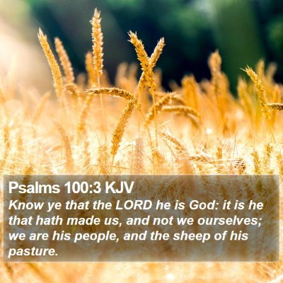 Psalms 100:3 KJV Bible Verse Image