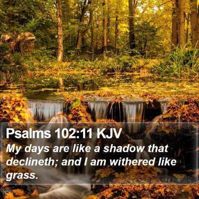 Psalms 102:11 KJV Bible Verse Image