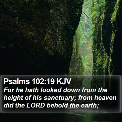 Psalms 102:19 KJV Bible Verse Image