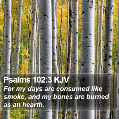 Psalms 102:3 KJV Bible Verse Image