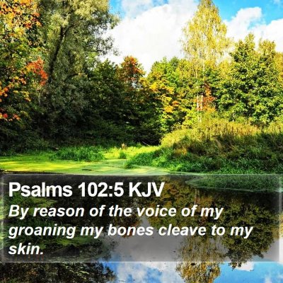 Psalms 102:5 KJV Bible Verse Image