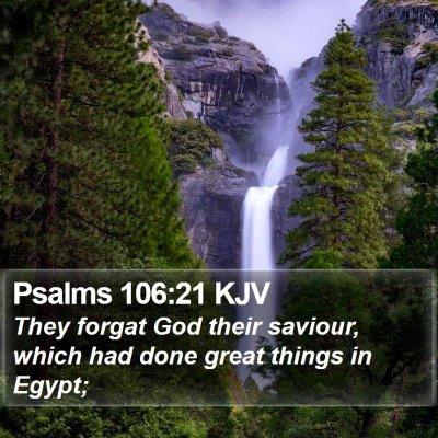 Psalms 106:21 KJV Bible Verse Image