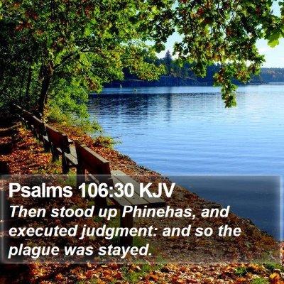 Psalms 106:30 KJV Bible Verse Image