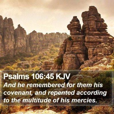 Psalms 106:45 KJV Bible Verse Image