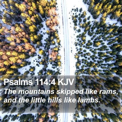 Psalms 114:4 KJV Bible Verse Image
