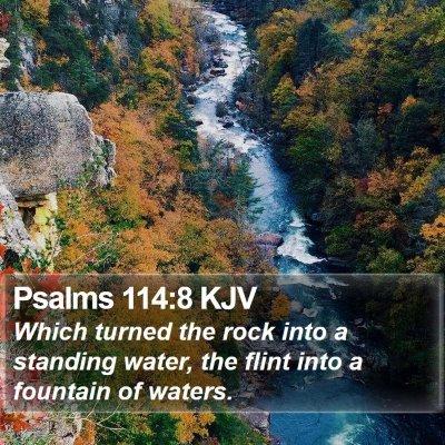 Psalms 114:8 KJV Bible Verse Image