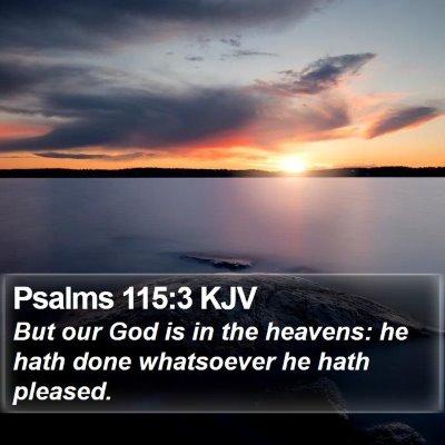 Psalms 115:3 KJV Bible Verse Image