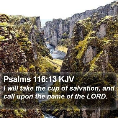 Psalms 116:13 KJV Bible Verse Image