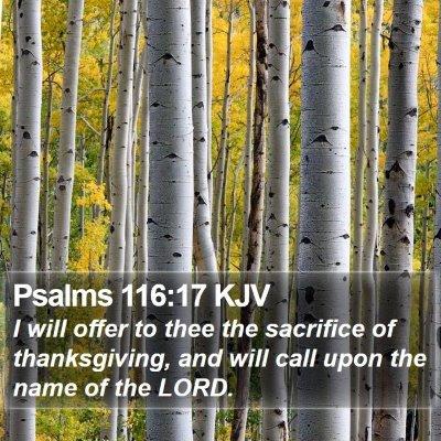 Psalms 116:17 KJV Bible Verse Image