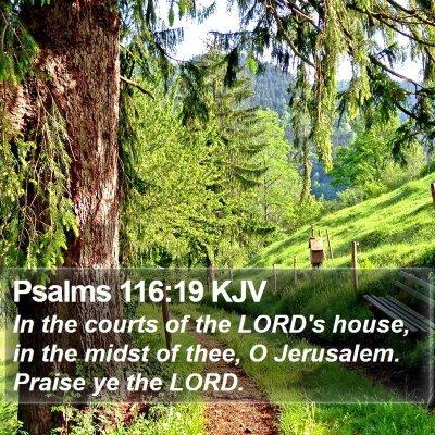Psalms 116:19 KJV Bible Verse Image
