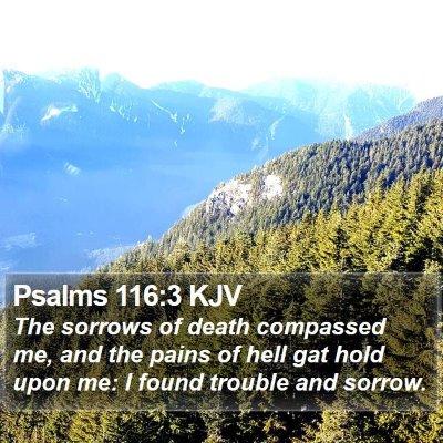 Psalms 116:3 KJV Bible Verse Image