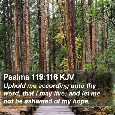 Psalms 119:116 KJV Bible Verse Image
