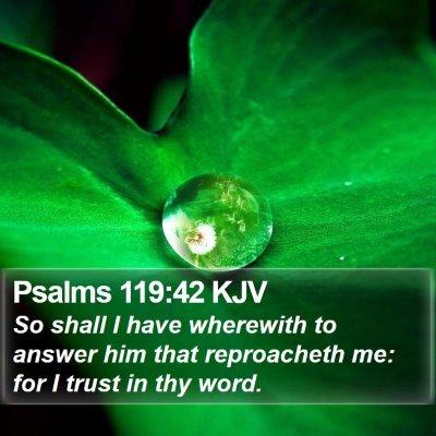 Psalms 119:42 KJV Bible Verse Image