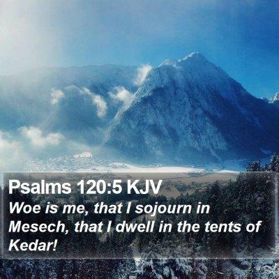 Psalms 120:5 KJV Bible Verse Image