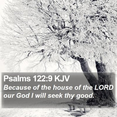Psalms 122:9 KJV Bible Verse Image