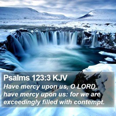 Psalms 123:3 KJV Bible Verse Image