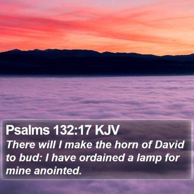 Psalms 132:17 KJV Bible Verse Image