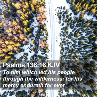 Psalms 136:16 KJV Bible Verse Image