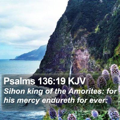Psalms 136:19 KJV Bible Verse Image