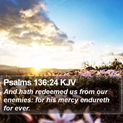 Psalms 136:24 KJV Bible Verse Image