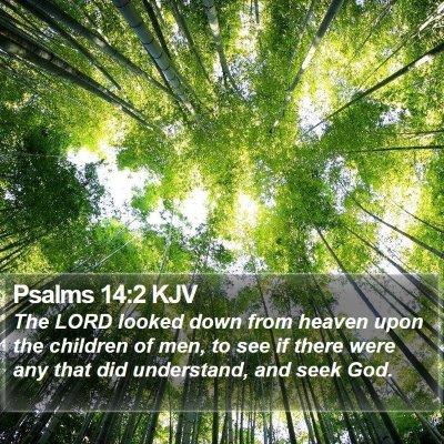 Psalms 14:2 KJV Bible Verse Image