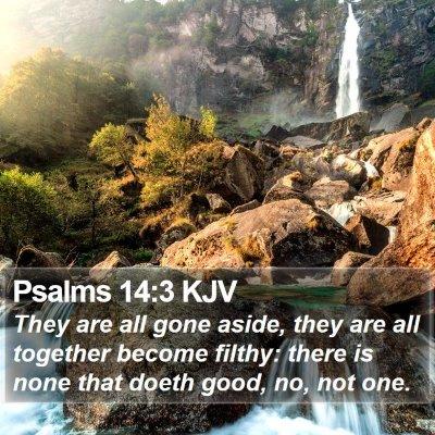 Psalms 14:3 KJV Bible Verse Image