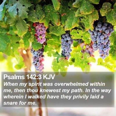 Psalms 142:3 KJV Bible Verse Image