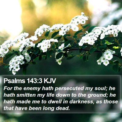 Psalms 143:3 KJV Bible Verse Image