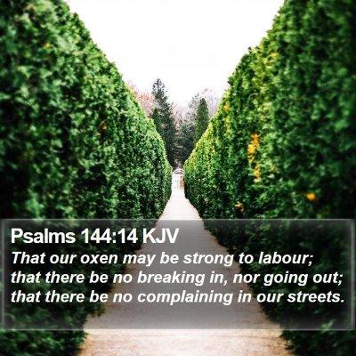 Psalms 144:14 KJV Bible Verse Image