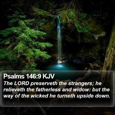 Psalms 146:9 KJV Bible Verse Image