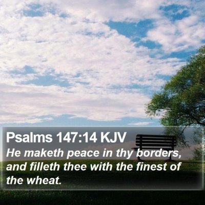 Psalms 147:14 KJV Bible Verse Image